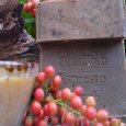 Brazilian Espresso Scrub Soap with Cocoa Butter and Hazelnut Citrus Essential Oils 5.5 Oz