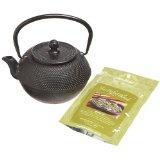 Primula PCI-7440 Cast Iron 40 Ounce Tea Pot