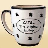 CATS The Original Laptop